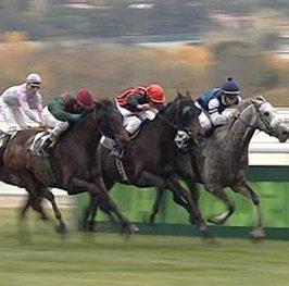 Carreras de caballos en Madrid