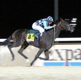 Juegos de carreras de caballos
