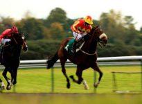 Apuestas de caballos en los hipódromos de Newcastle y Newmarket, 27 de mayo