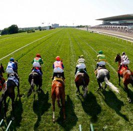 Apuestas de caballos en el hipódromo de Ripon, 15 de mayo