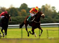 Apuestas de caballos 5 de mayo, turf en Ffos Las