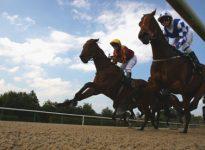 Apuestas de caballos en el hipódromo de Kempton, 20 de junio