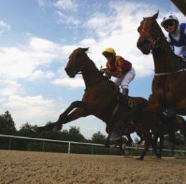 Apuestas de caballos en el hipódromo de Kempton, 17 de mayo