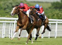 Apuestas de caballos en el hipódromo de Newmarket, 13 de agosto