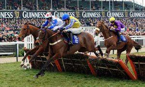Apuestas caballos ganar dinero saltos vallas hurdles chase