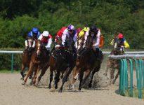 Apuestas de caballos en el hipódromo de Lingfield, 23 de marzo