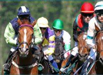 Apuestas de caballos en el hipódromo de Southwell, 8 de marzo