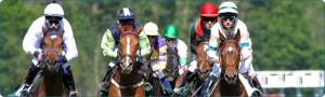apuestas-caballos-wolverhampton-southwell-lingfield-kempton-all weather-carreras-ganar-dinero