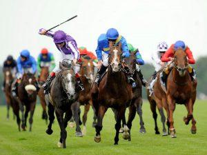 caballos-de-carreras